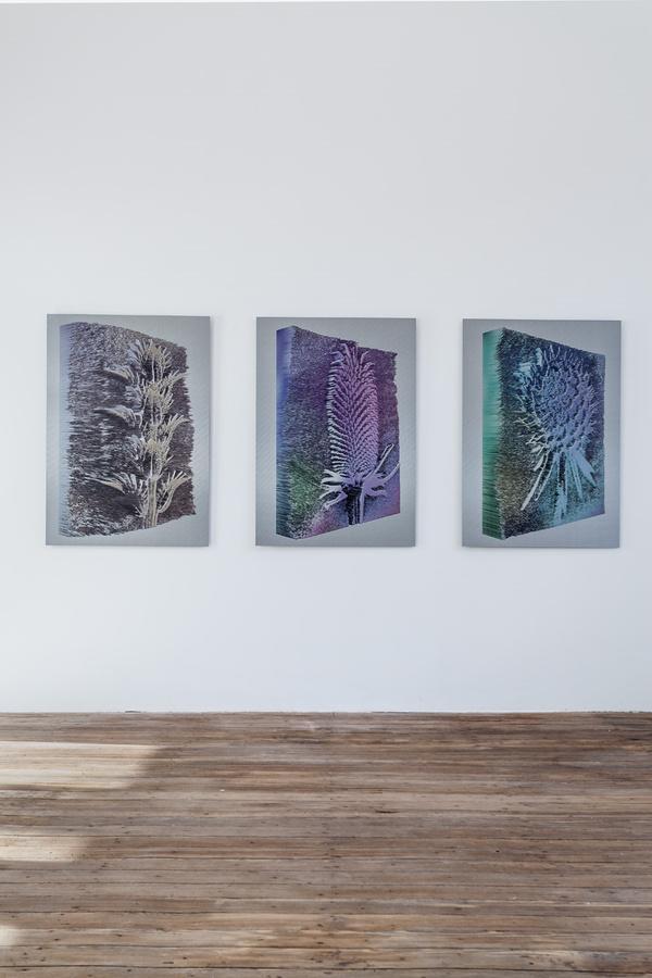 Installation view; Spiros Hadjidjanos; Galerie Gabriel Rolt  (1)