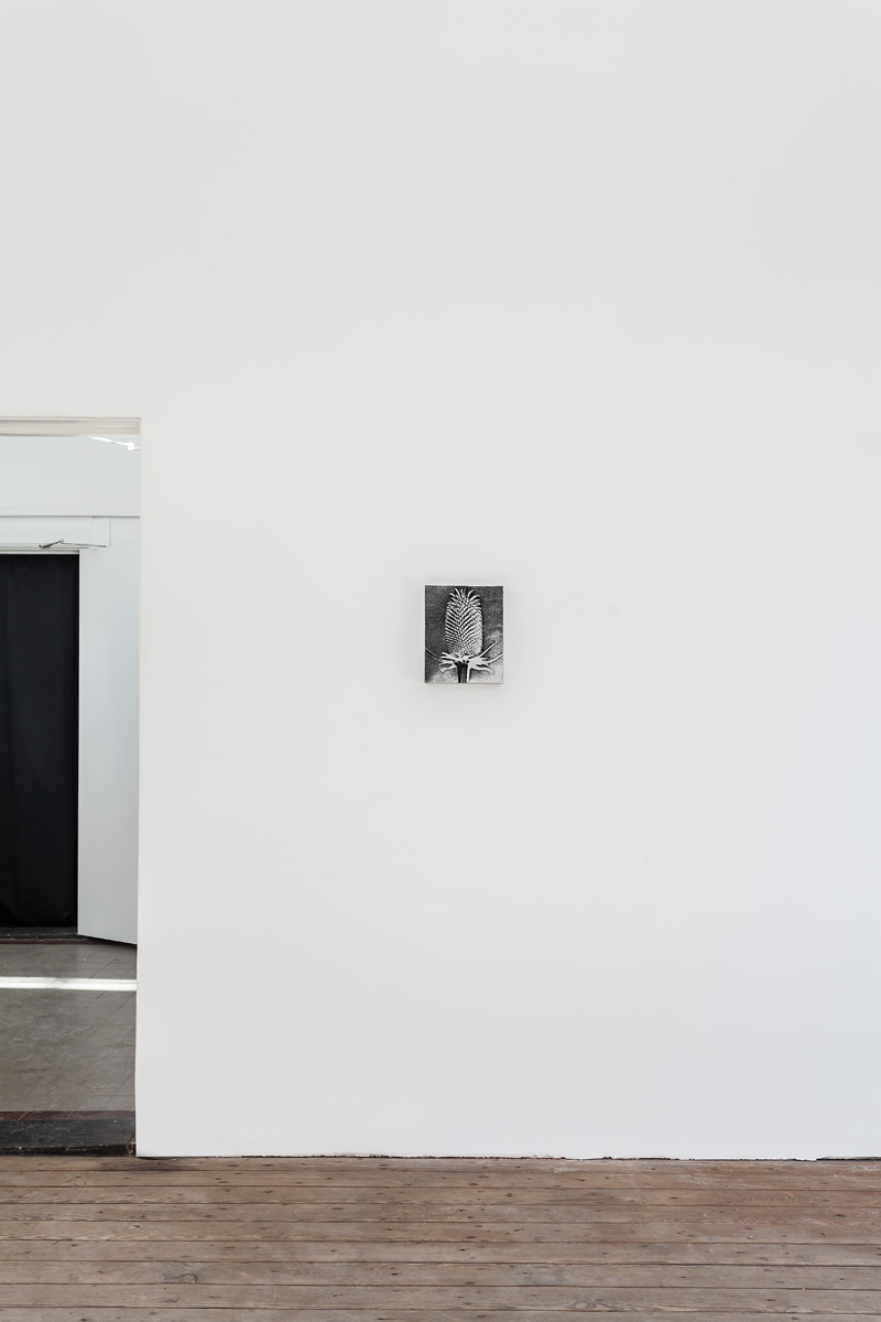 Installation view; Spiros Hadjidjanos; Three Rooms - Galerie Gabriel Rolt