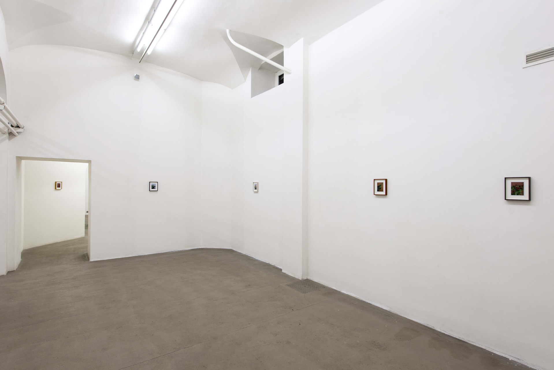 A_FG_Installation view_25