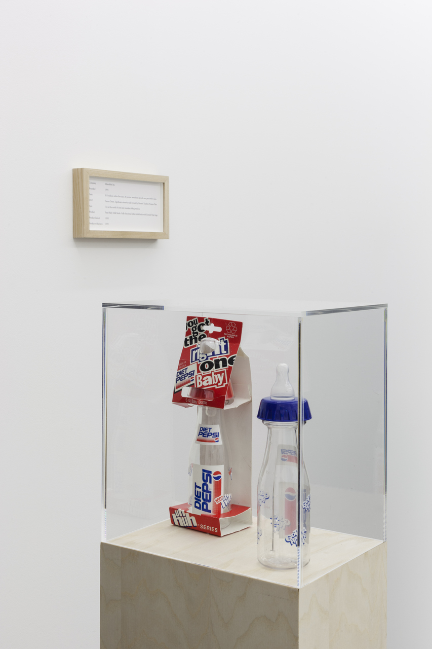 Maryam Jafri, ÔÇÿProduct Recall - An Index of InnovationÔÇÖ, 2014, framed texts, photographs, plinths, objects, installation dimensions variable - 2