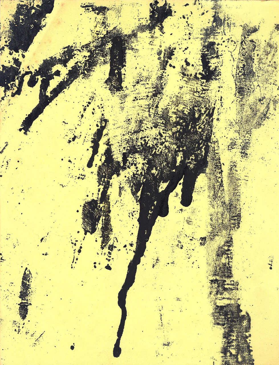 Art Viewer 15 g