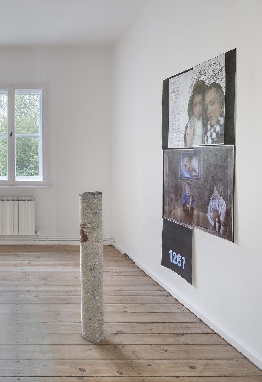 DB_Installation view_Softer Than Stone And Sick in your Mind_2015_Photo Credit_Joachim Schulz_Courtesy_Croy Nielsen