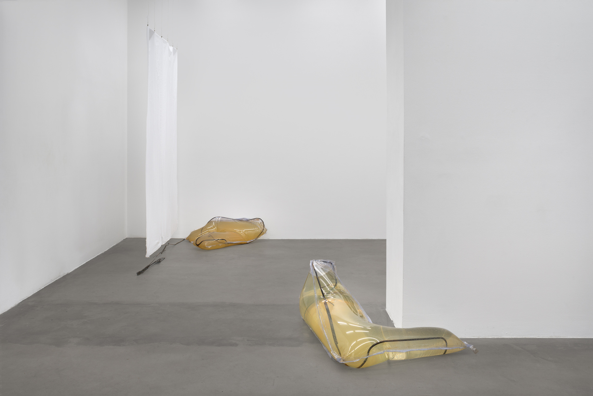OB_Installation view_Cannibals_2015_Photocredit_Joachim Schulz_Courtesy Croy Nielsen