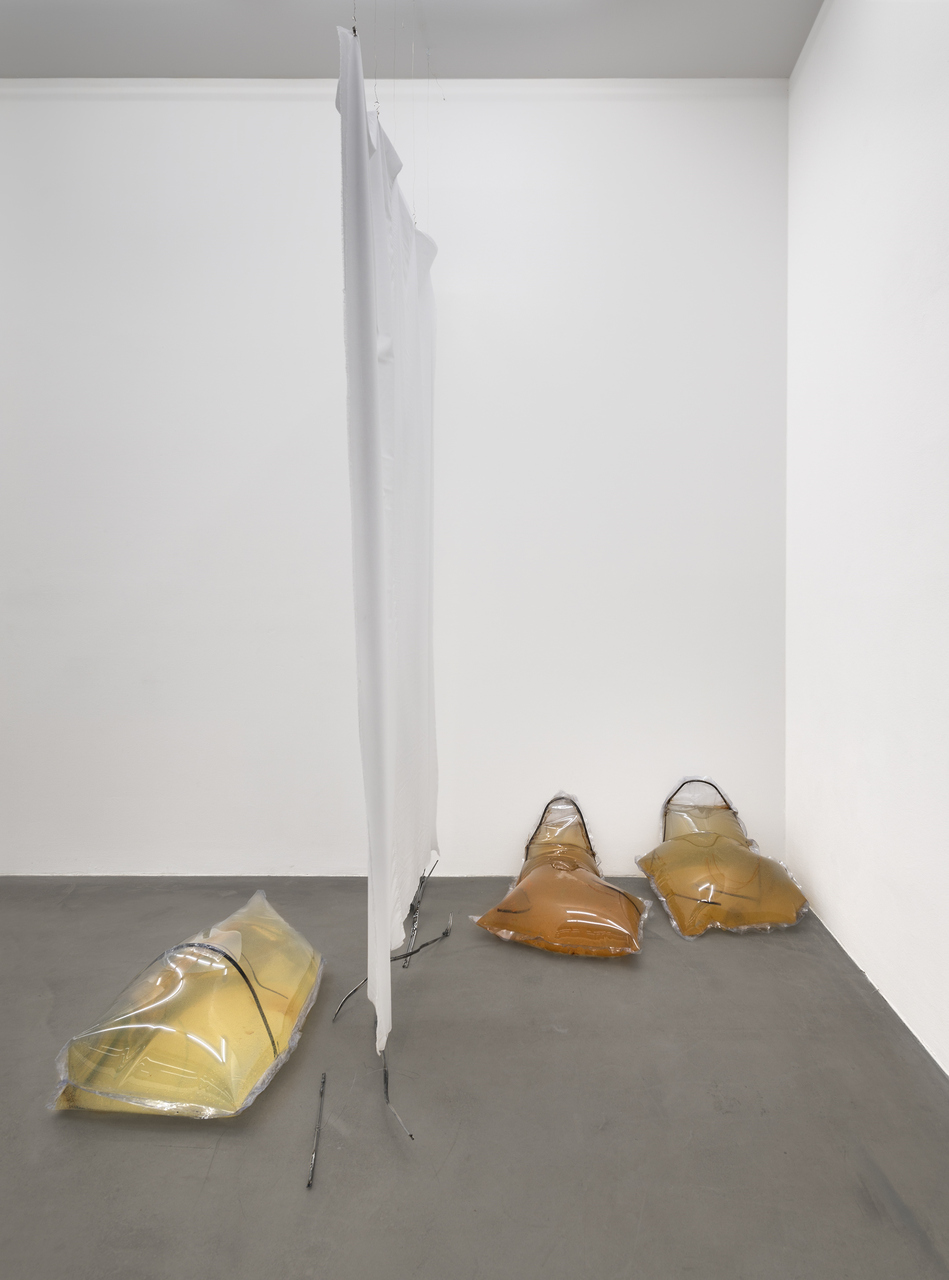OB_Installation view_Cannibals_2015_Photocredit_Joachim Schulz_Courtesy Croy Nielsen_1