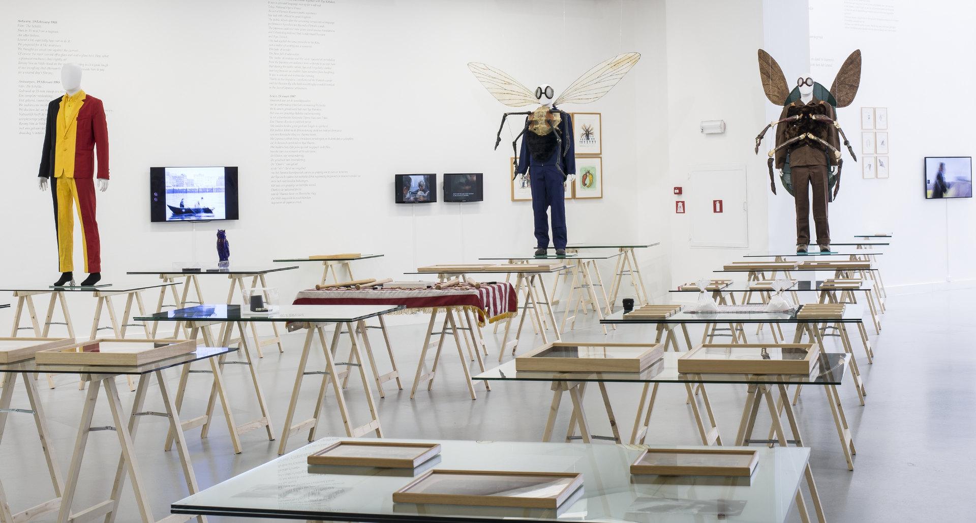 Jan_Fabre,_exhibition_view_M_HKA_2015_photo_M_HKAclinckx10