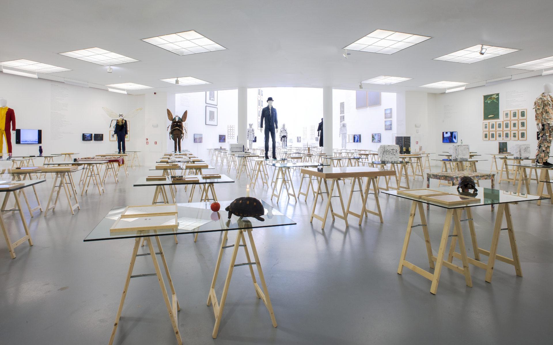 Jan_Fabre,_exhibition_view_M_HKA_2015_photo_M_HKAclinckx19