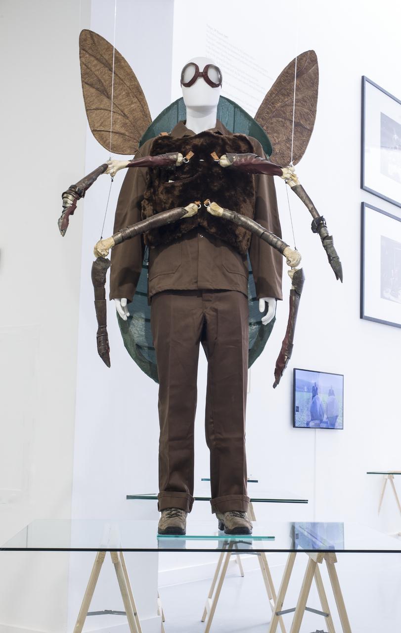 Jan_Fabre,_exhibition_view_M_HKA_2015_photo_M_HKAclinckx8