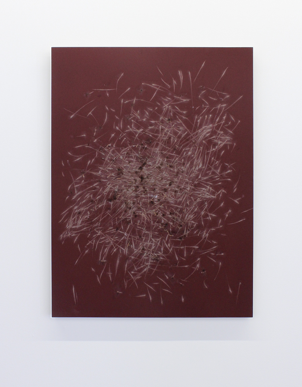 38.Wachholz_Ohne Titel (Reibflache),2015_Red phosphorous and binder on wood