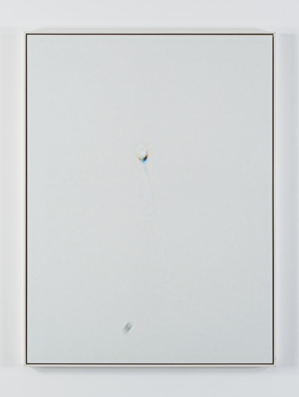 RODR 2012003