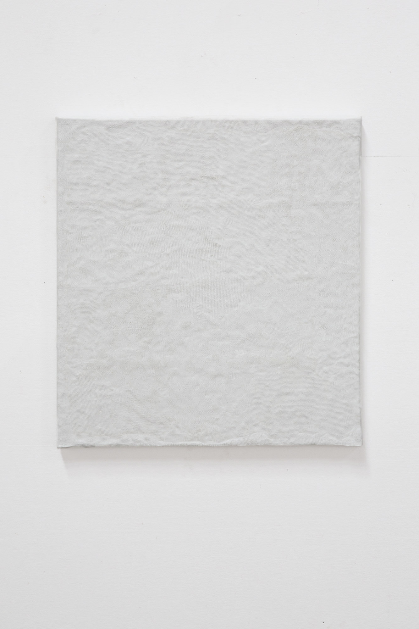Nick Fusaro Untitled (White Canvas) (1)
