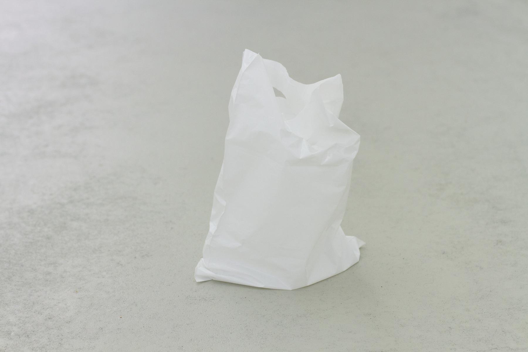 2-bag-side
