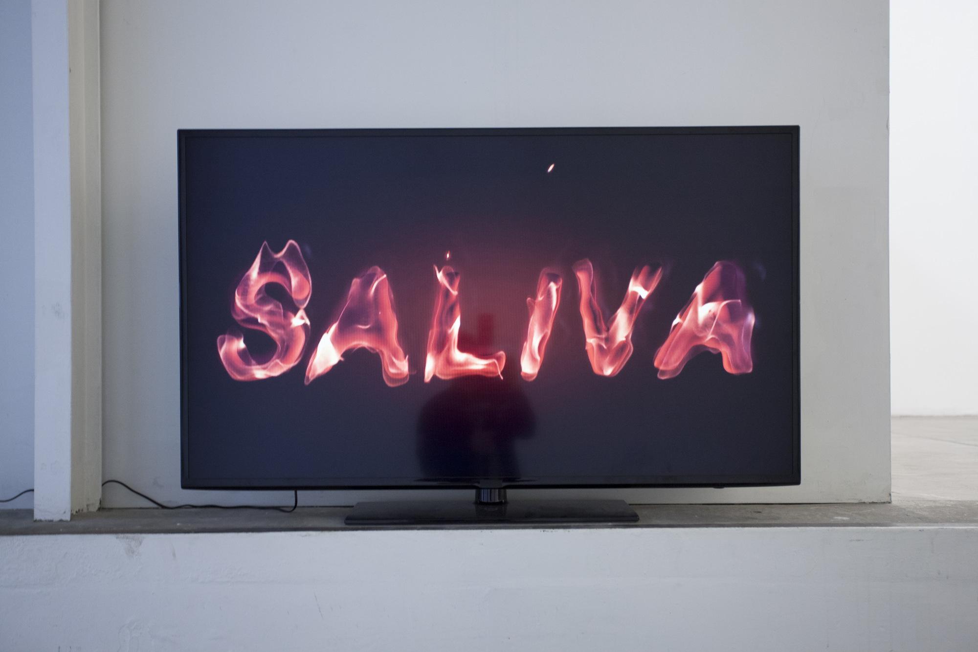 15d.Grégoire Skensved_Salami Saliva Squirt_2015