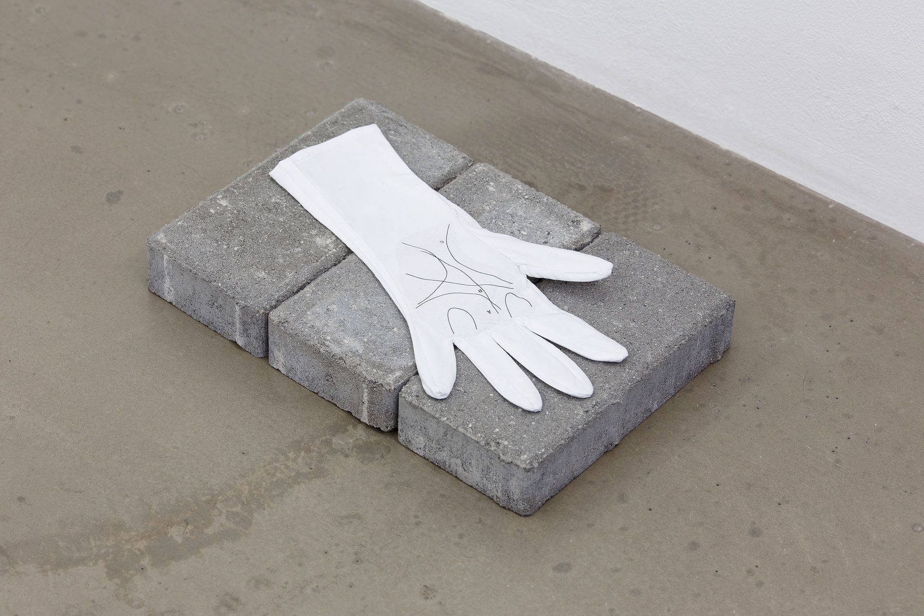 Palmistry, 2015, cotton glove, 14 x 27 cm (1)