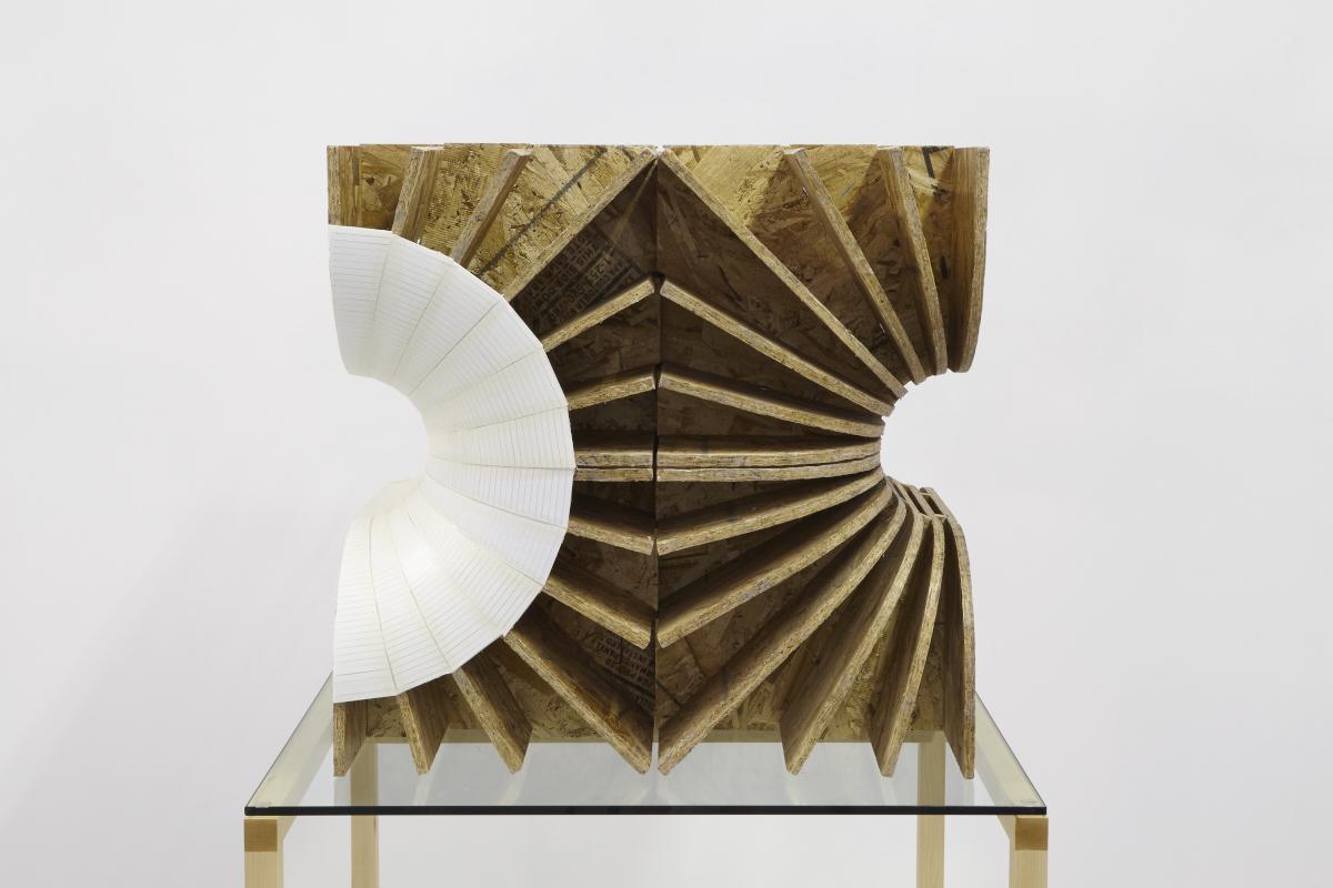 56.Hoeber_Negative Space of Organ (Shell), 2015_Sculpture-OSB