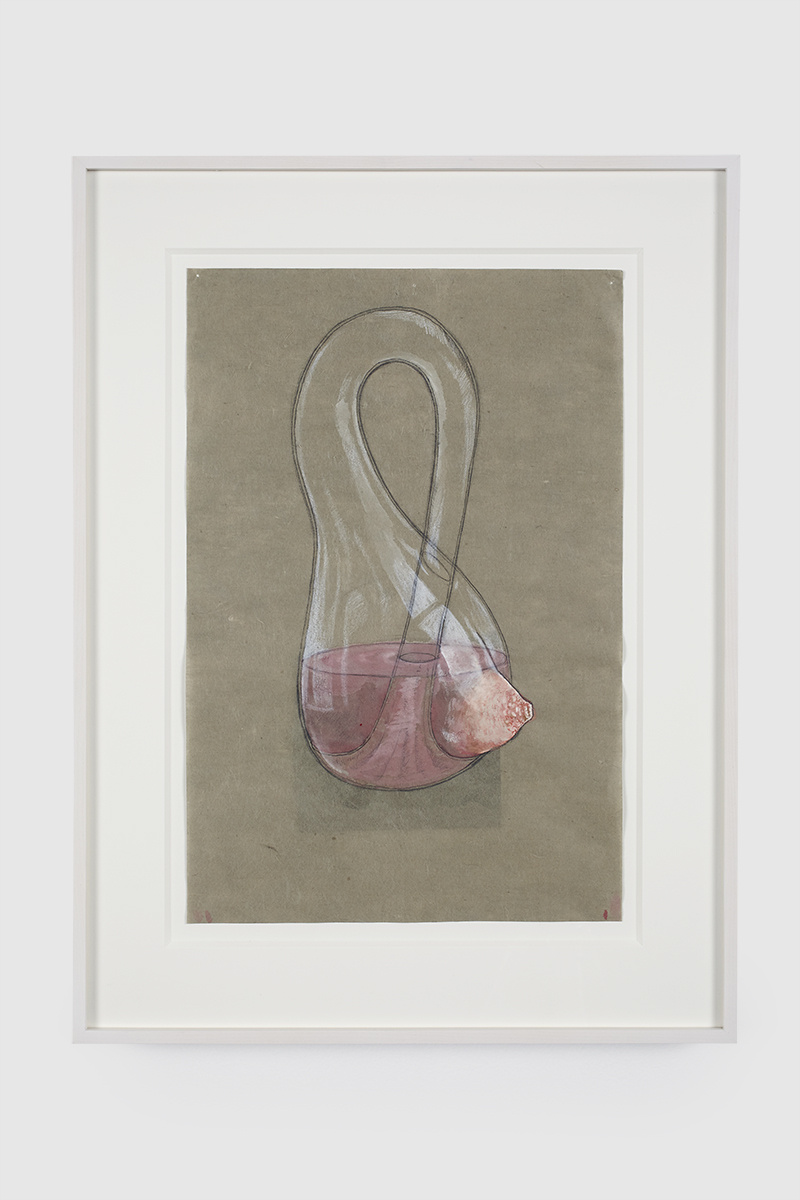 83.Hoeber_Melanie Klein Bottle, 2015_Graphite and gouache on mulberry paper_15x10 in