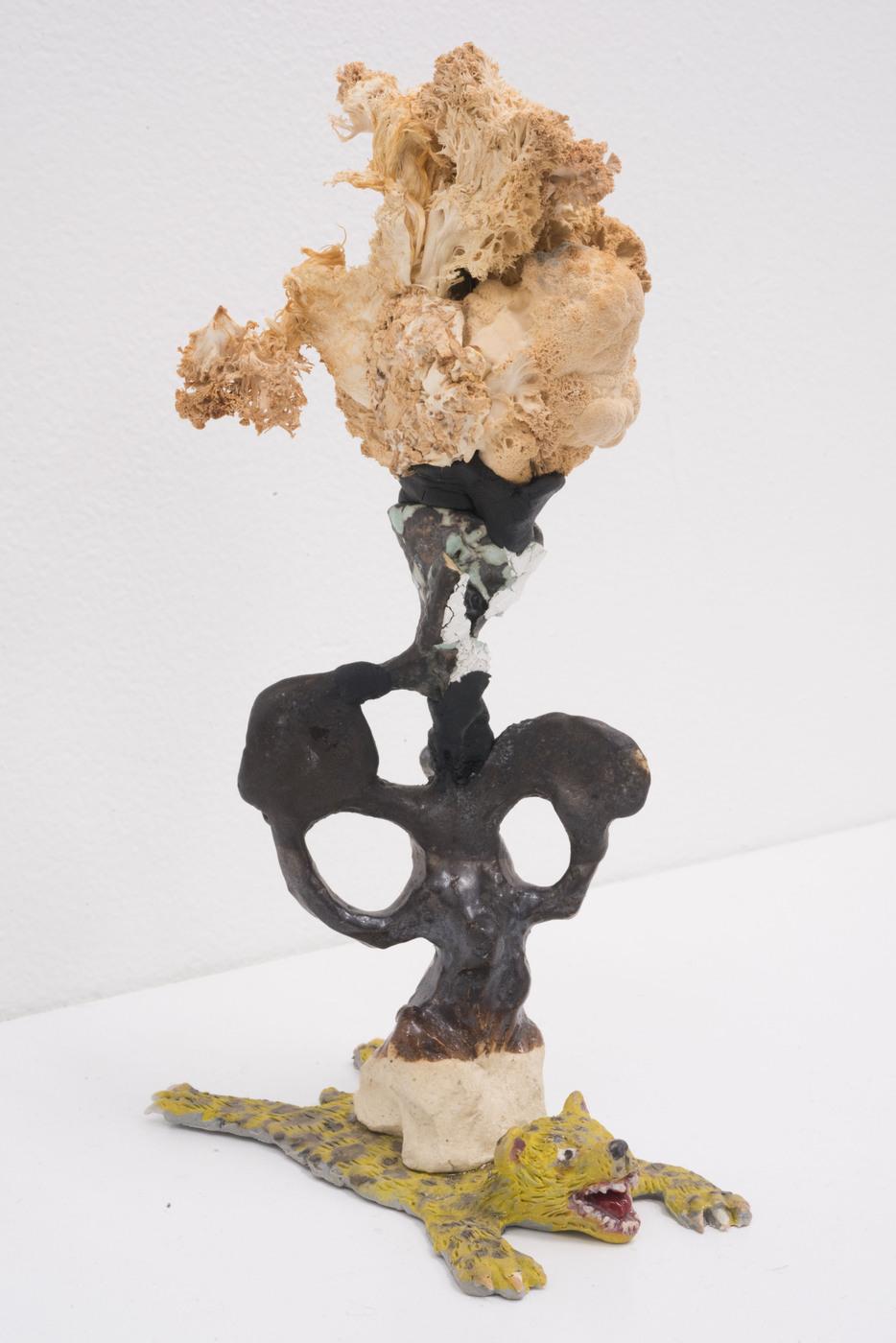 MushroomsHoney-CandiceLin-right