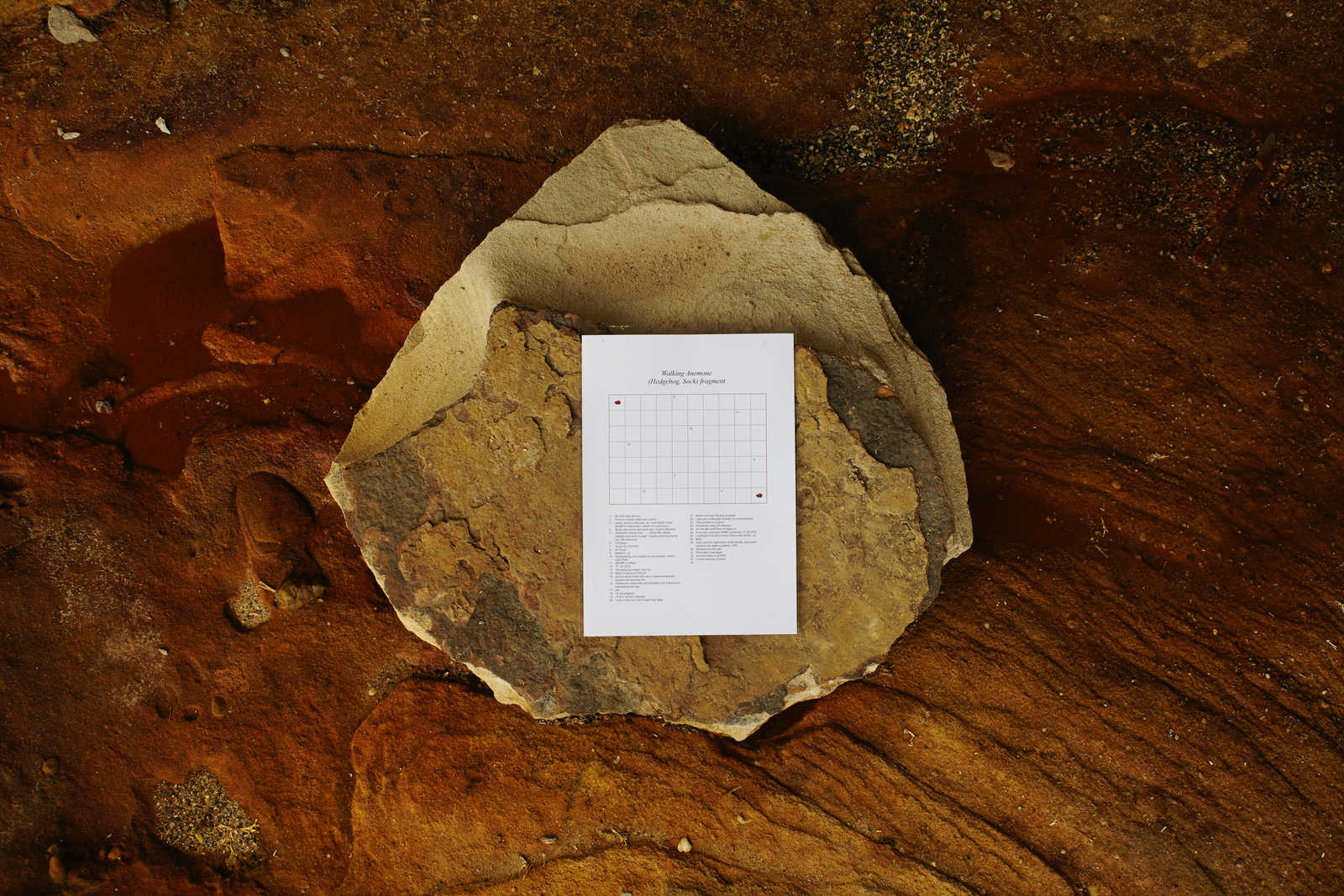 Adriana Ramić install PDF