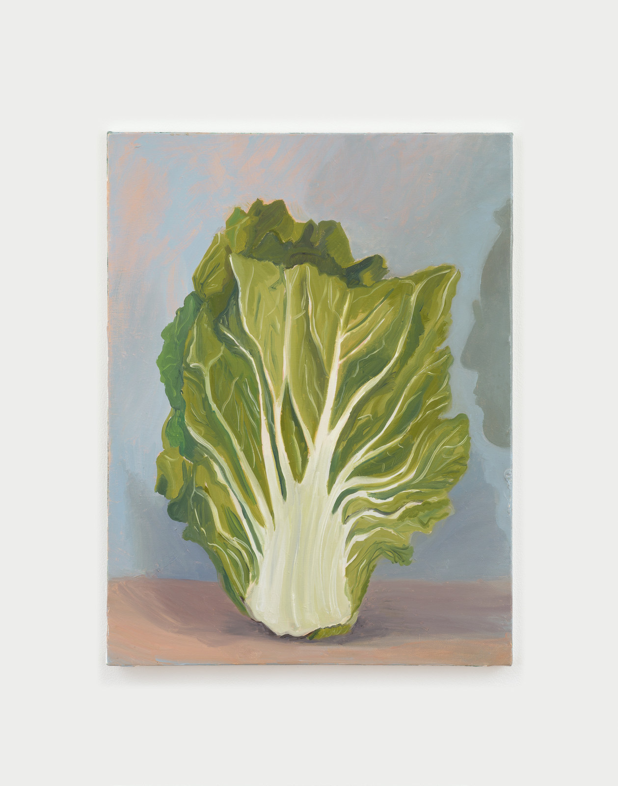 Cabbage (and Philip) No.5-300