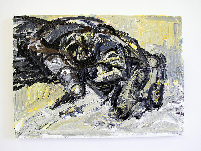 Claw, 50x70cm, oil on linnen, 2016