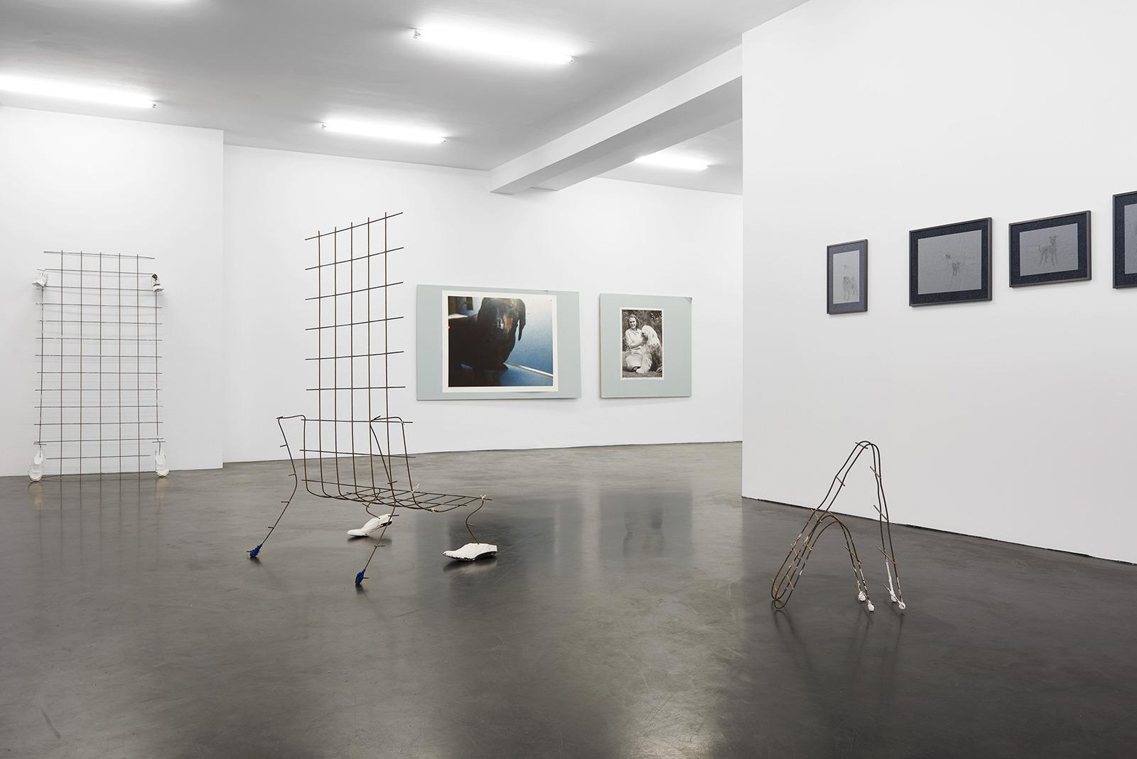 George Rippon Ich bin Hund Installation 5