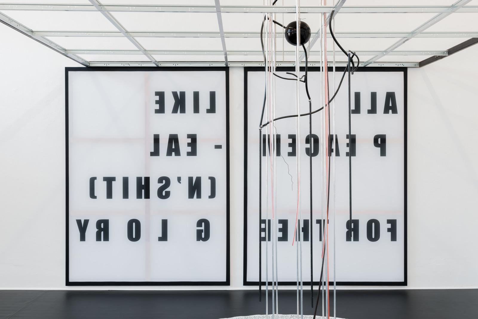 David Douard at Kunstverein Braunschweig_2