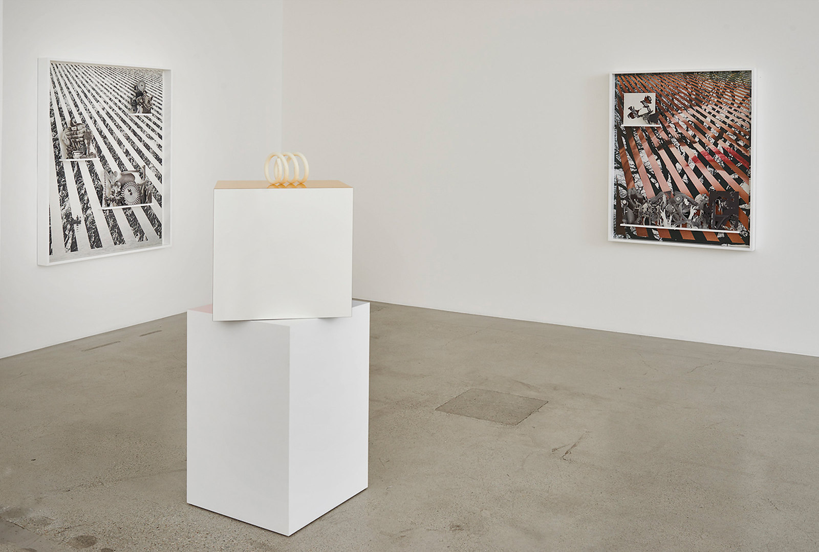 An Uncanny Order, 2016_Jessica Silverman Gallery_installation view_PRS 7
