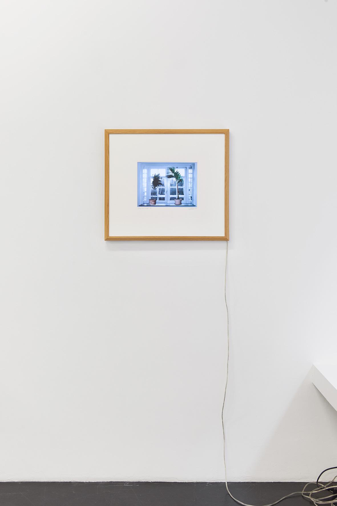 Ger van Elk_Talkin Trees-Window_2004_Markus Luettgen Gallery