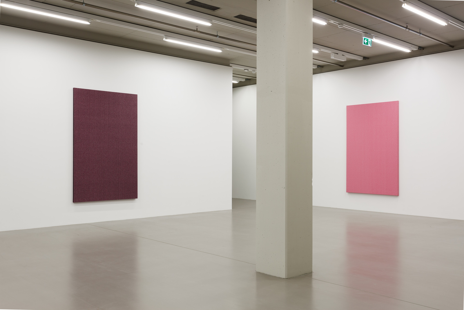 Willem_de_Rooij_Zen_Chyme_in_her_Jeans_2011_Untitled_for_now_Pink_2012