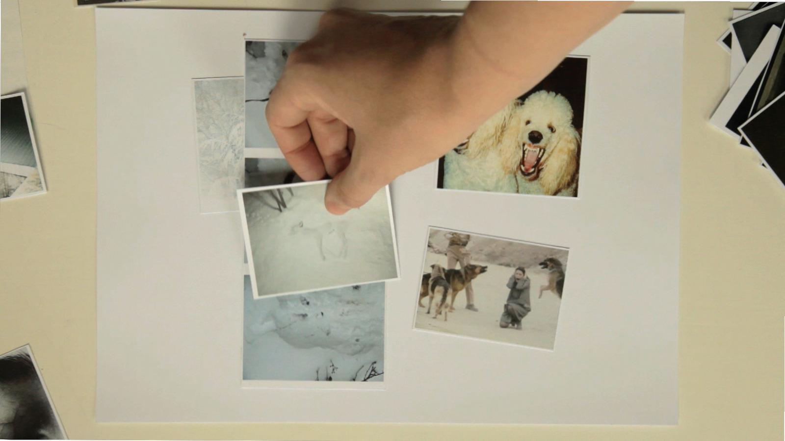 Alex Reynolds - frame II obra _ver nieve_