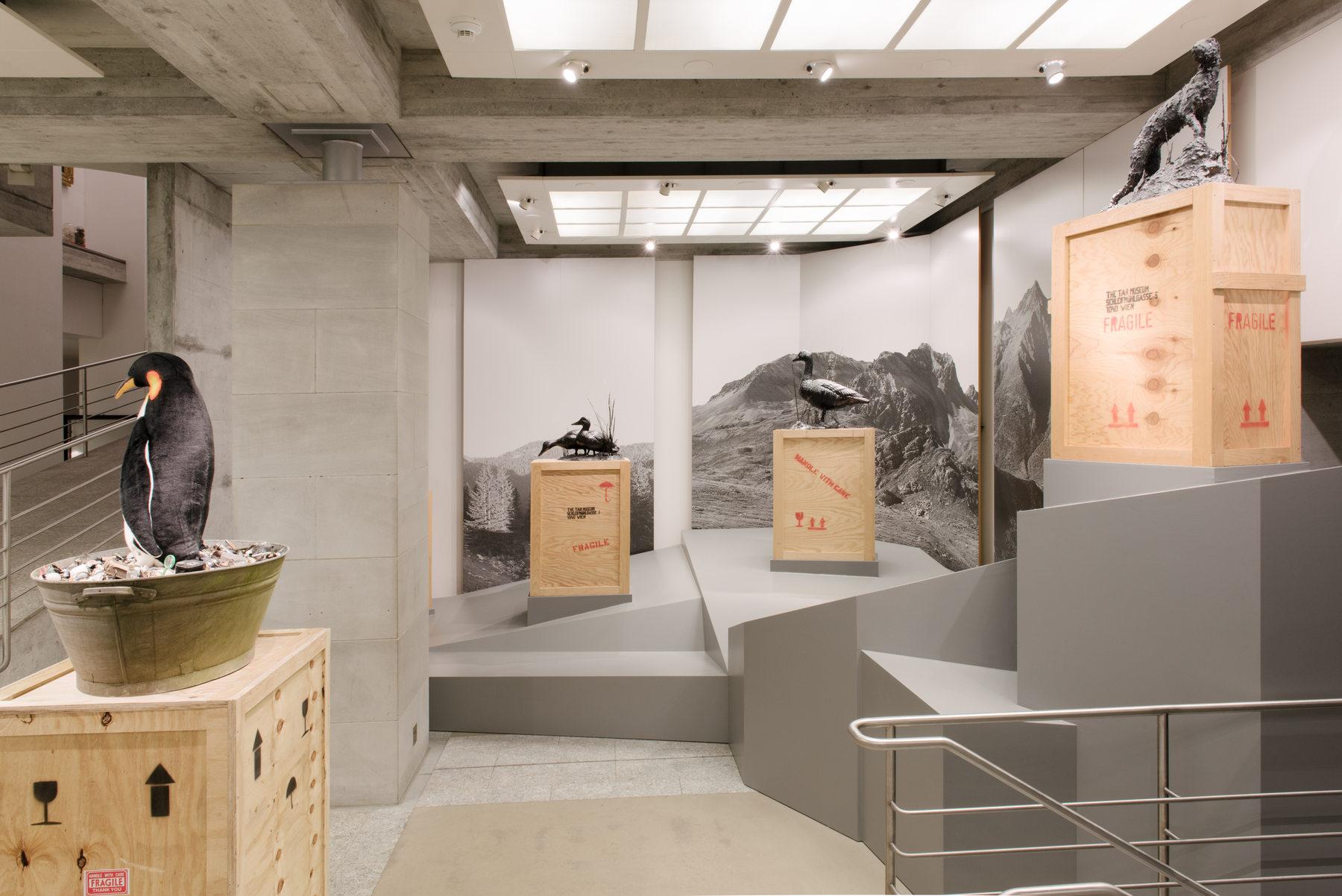 02_Installationsansicht_St.Gallen__Foto_Sebastian_Stadler