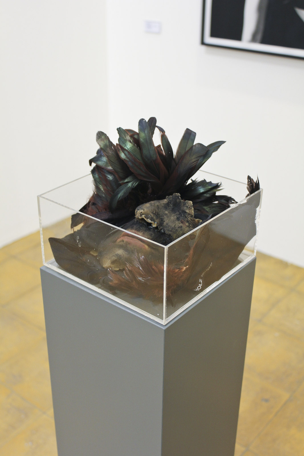 Lynn Hershman Leeson at Vilma Gold, London 10
