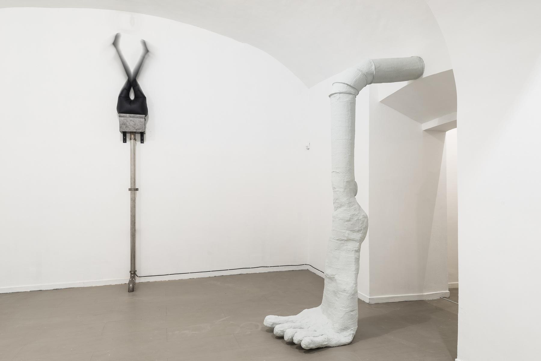 03_WalledGardenInAnInsaneEden_2017_InstallationView_Room3_z2oSaraZaninGallery_Roma