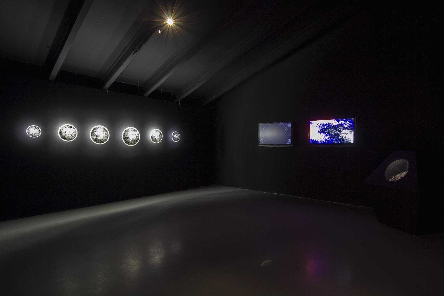 20-Citynature-Vilnius and Beyond-National-Gallery-Of-Art-Vilnius-2017-Kuai -Shen