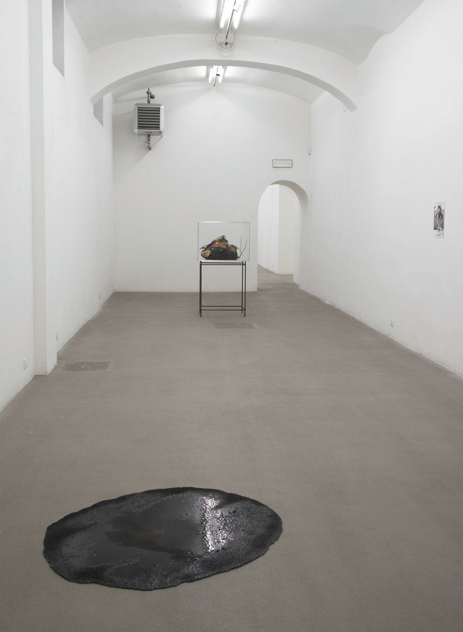 A_FG_Installation view_9