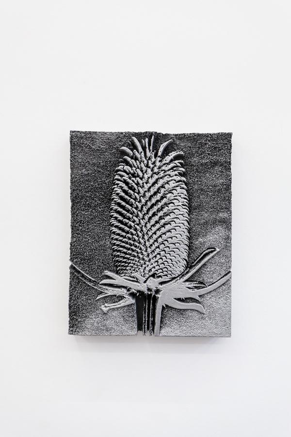 Spiros Hadjidjanos - Dipsacus Fullonum, 2015; Three Rooms - Galerie Gabriel Rolt