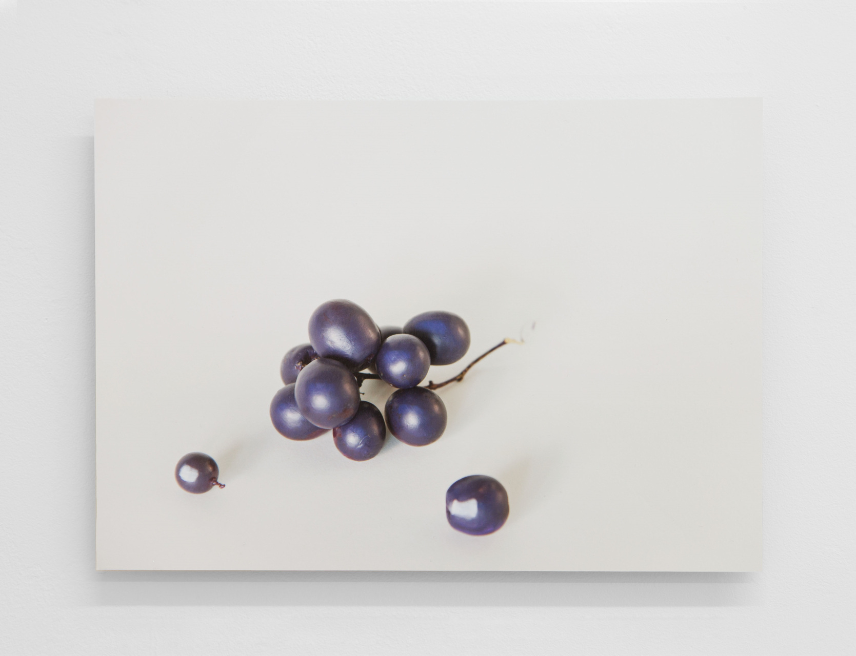 16 Grapes