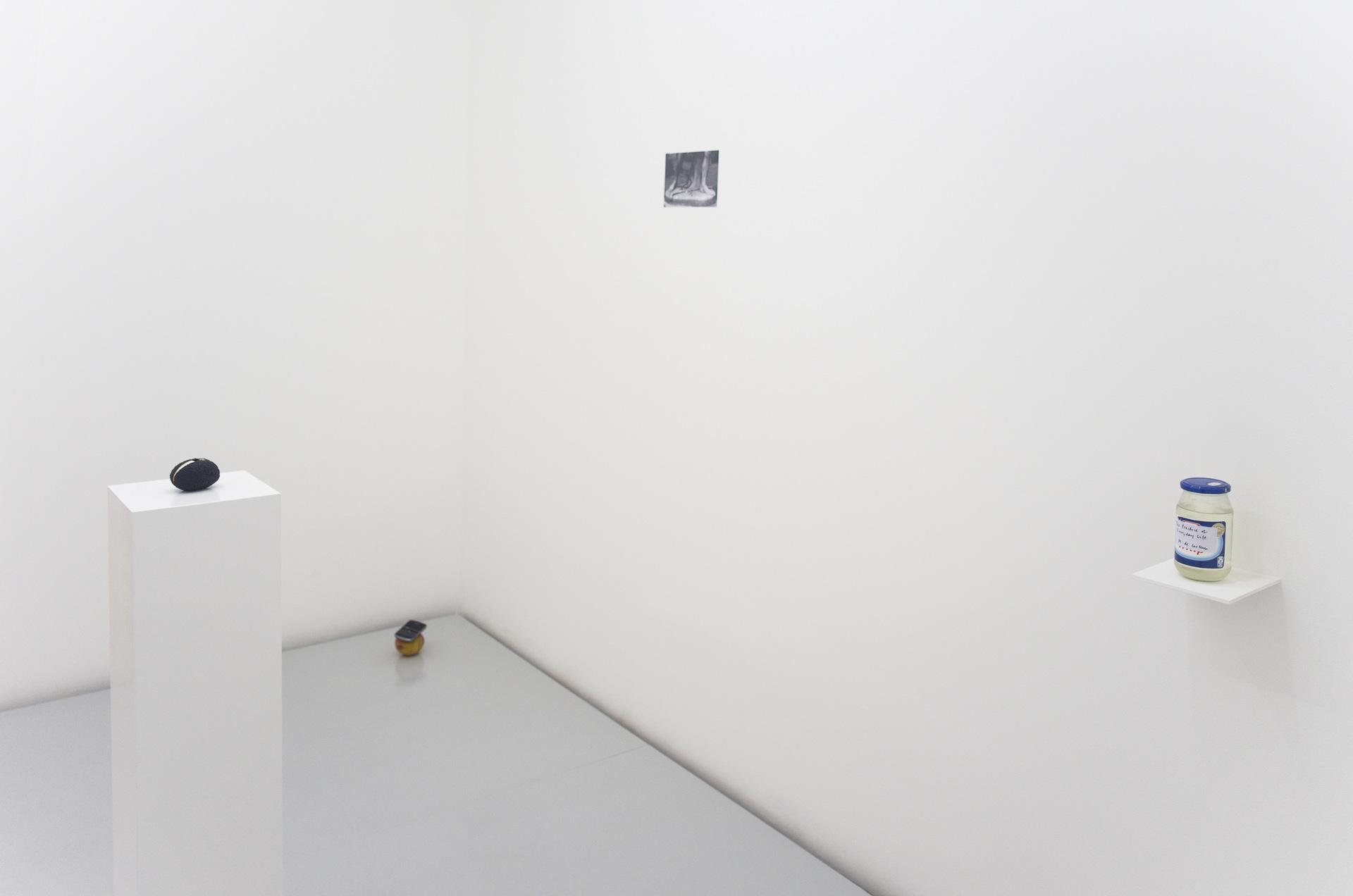 17 Install Climent Pieroth da Anda Prieto