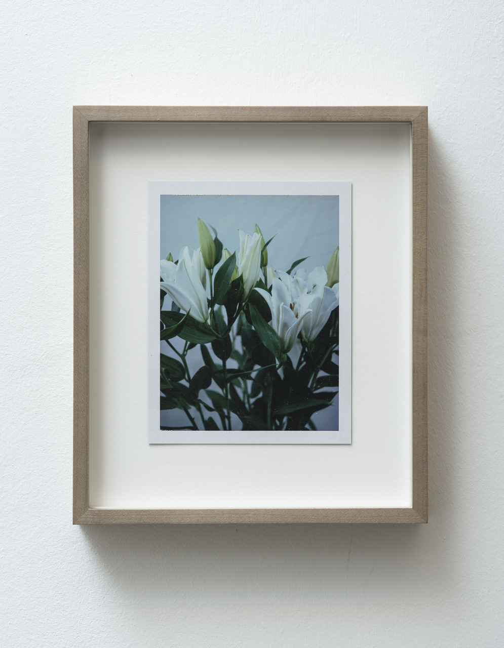 7_FG_Falls_Untitled (Life and death, Easter lilies)_diptych_A