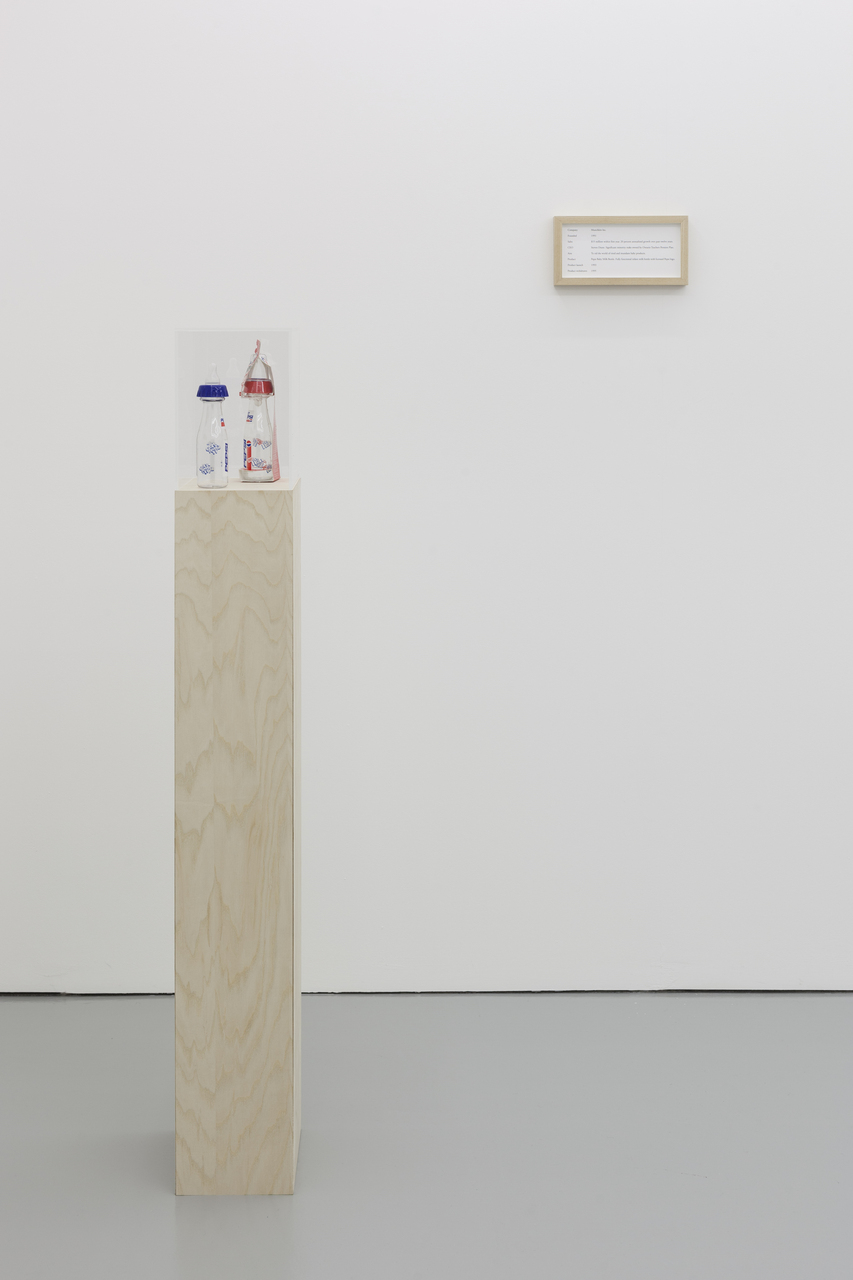 Maryam Jafri, ÔÇÿProduct Recall - An Index of InnovationÔÇÖ, 2014, framed texts, photographs, plinths, objects, installation dimensions variable - 1