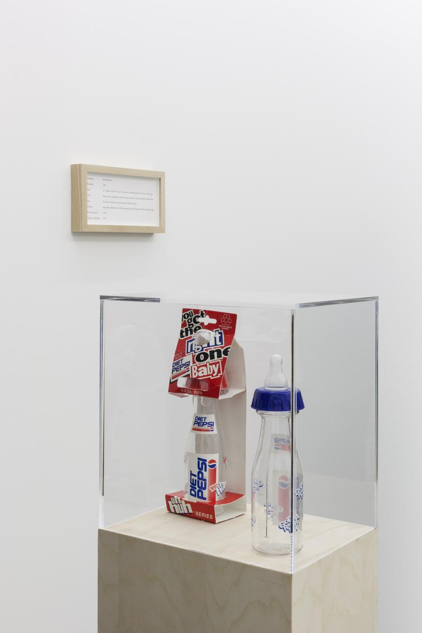 Maryam Jafri, ÔÇÿProduct Recall - An Index of InnovationÔÇÖ, 2014, framed texts, photographs, plinths, objects, installation dimensions variable - 2