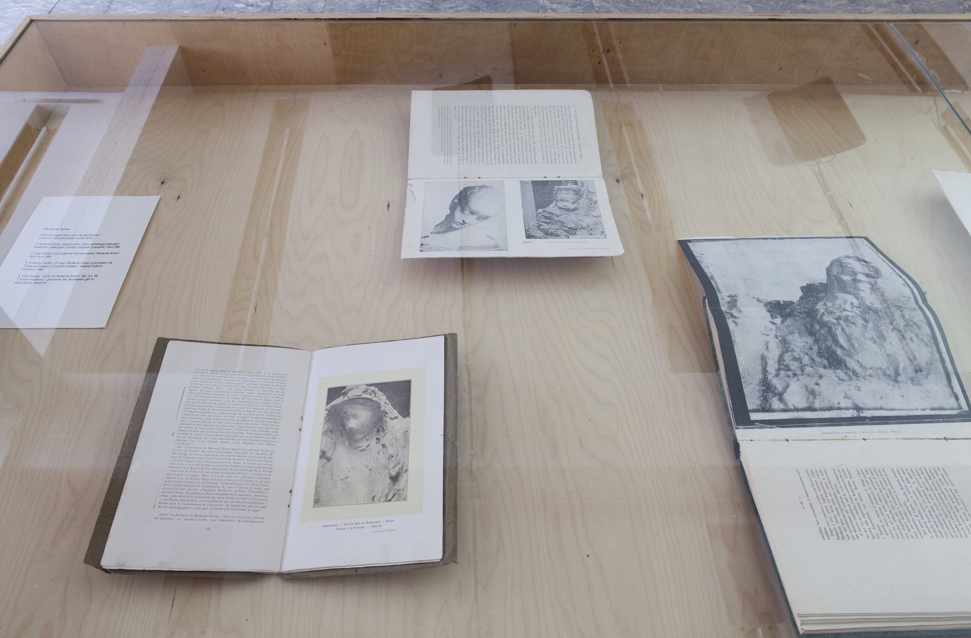 Medardo Rosso, selection of publications on the artist, in 'The Camera's Blind Spot II', installation view, Extra City Kunsthal, 2015 © We Document Art