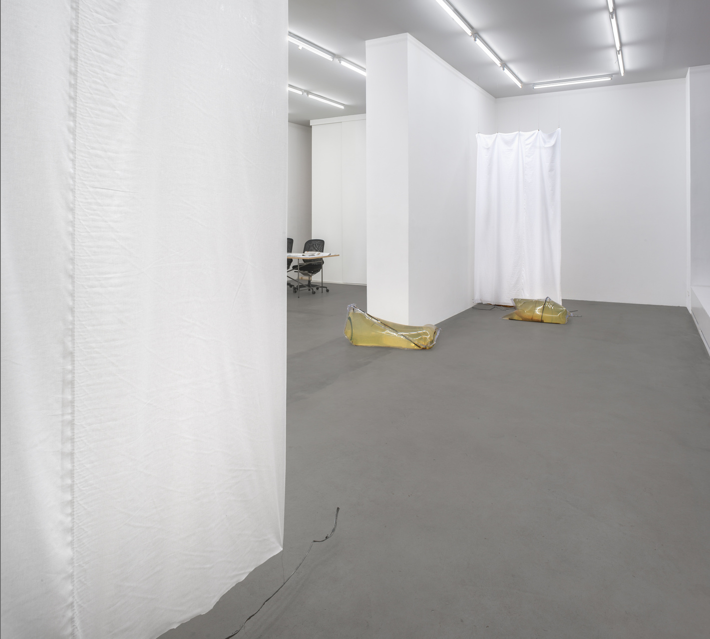 OB_Installation view_Cannibals_2015_Photocredit_Joachim Schulz_Courtesy Croy Nielsen_4