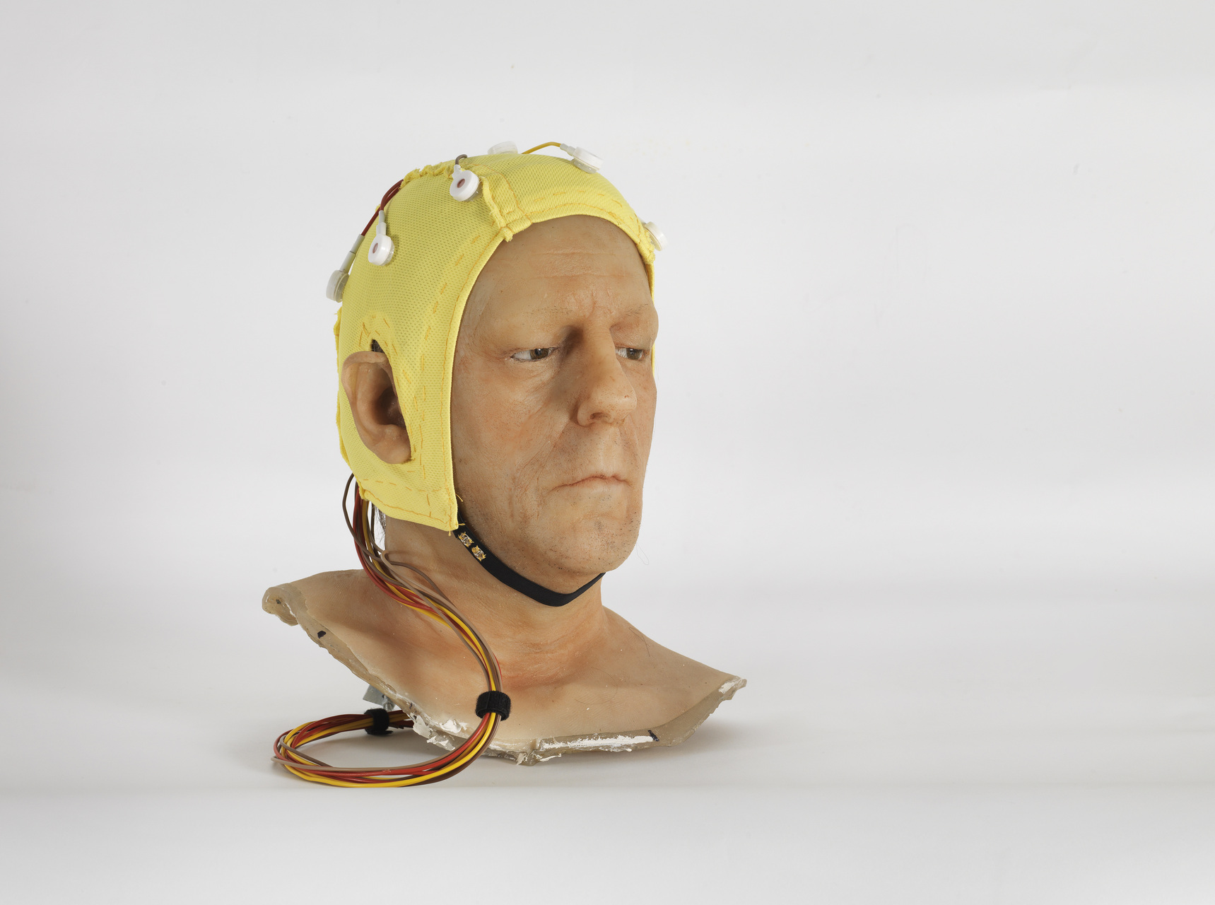 Jan_Fabre,_Do_We_Feel_With_Our_Brain_and_Think_With_Our_Heart,_2012,_collection_Angelos_bvba,_photo_Lieven_Herreman_courtesy_Angelos