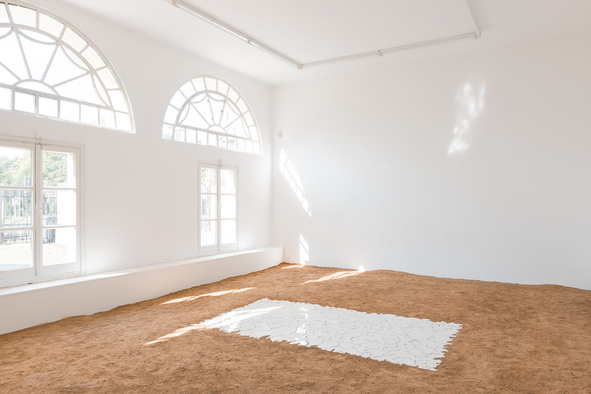 Anca Munteanu Rimnic at Kunstverein Braunschweig 1