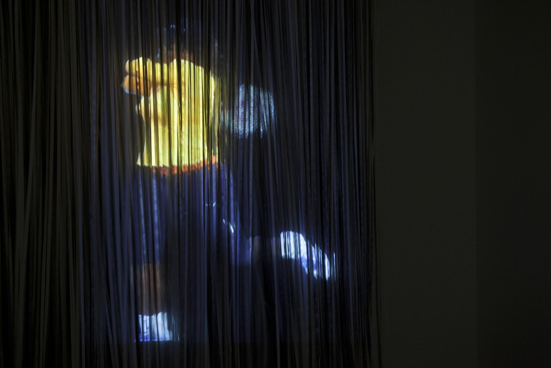 CC_25_Fry_Guy_JPW3_Serena_Hologram_Installation