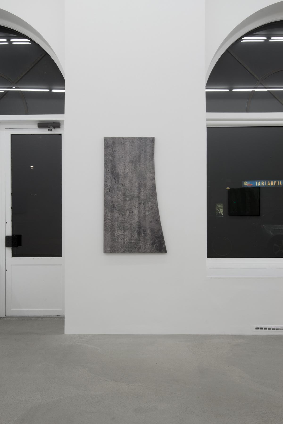 042_Mikkel Carl_Installation view