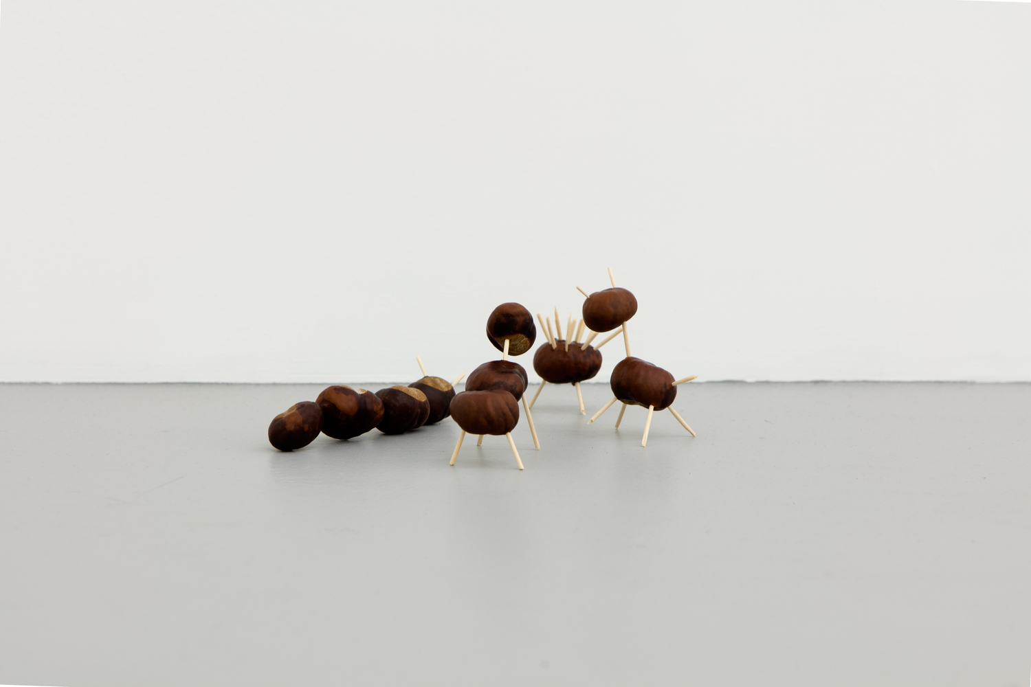 18_Anna-Sophie_Berger_and_Zak_Kitnick_Chestnut_Animals_2