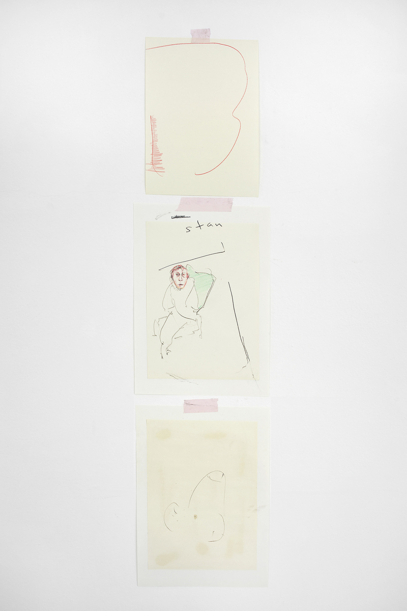 18 - Yves Scherer, Struggle II, 2015, Crayon and Pencil on Papers, Dim. Var. - Courtesy Studiolo, Milan - Photo Filippo Armellin
