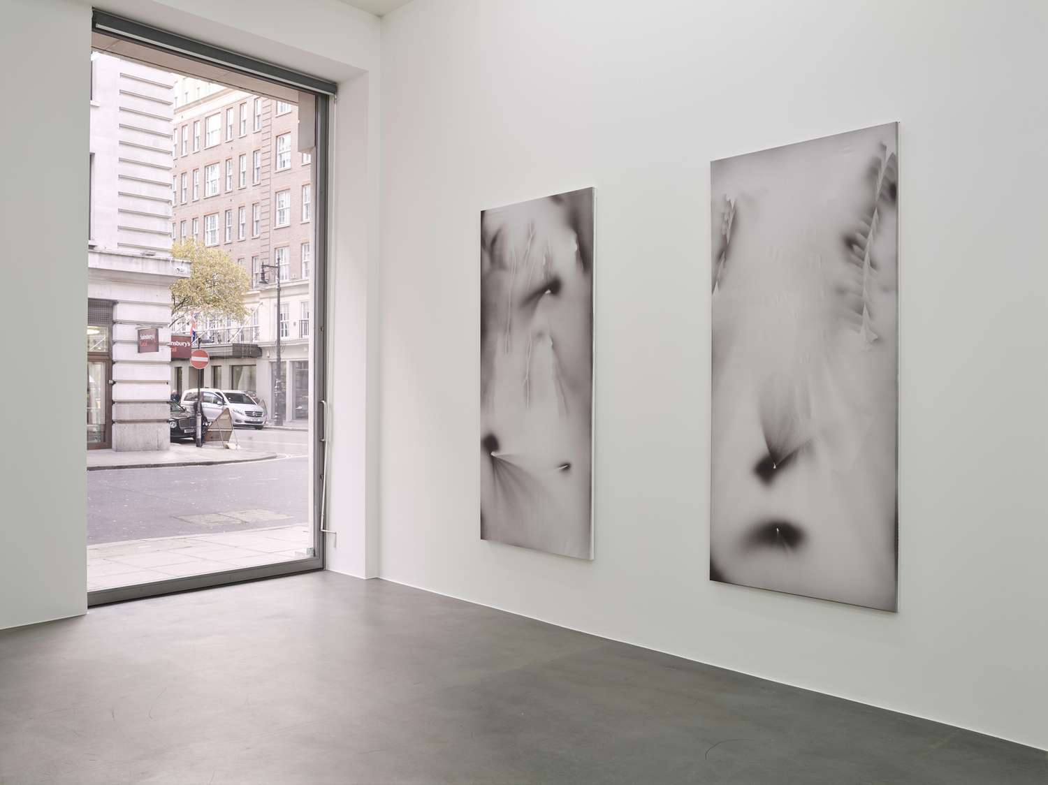 JZ_2016_SOME SCREEN MODS_Simon Lee Gallery, London_Installation View_P (4)