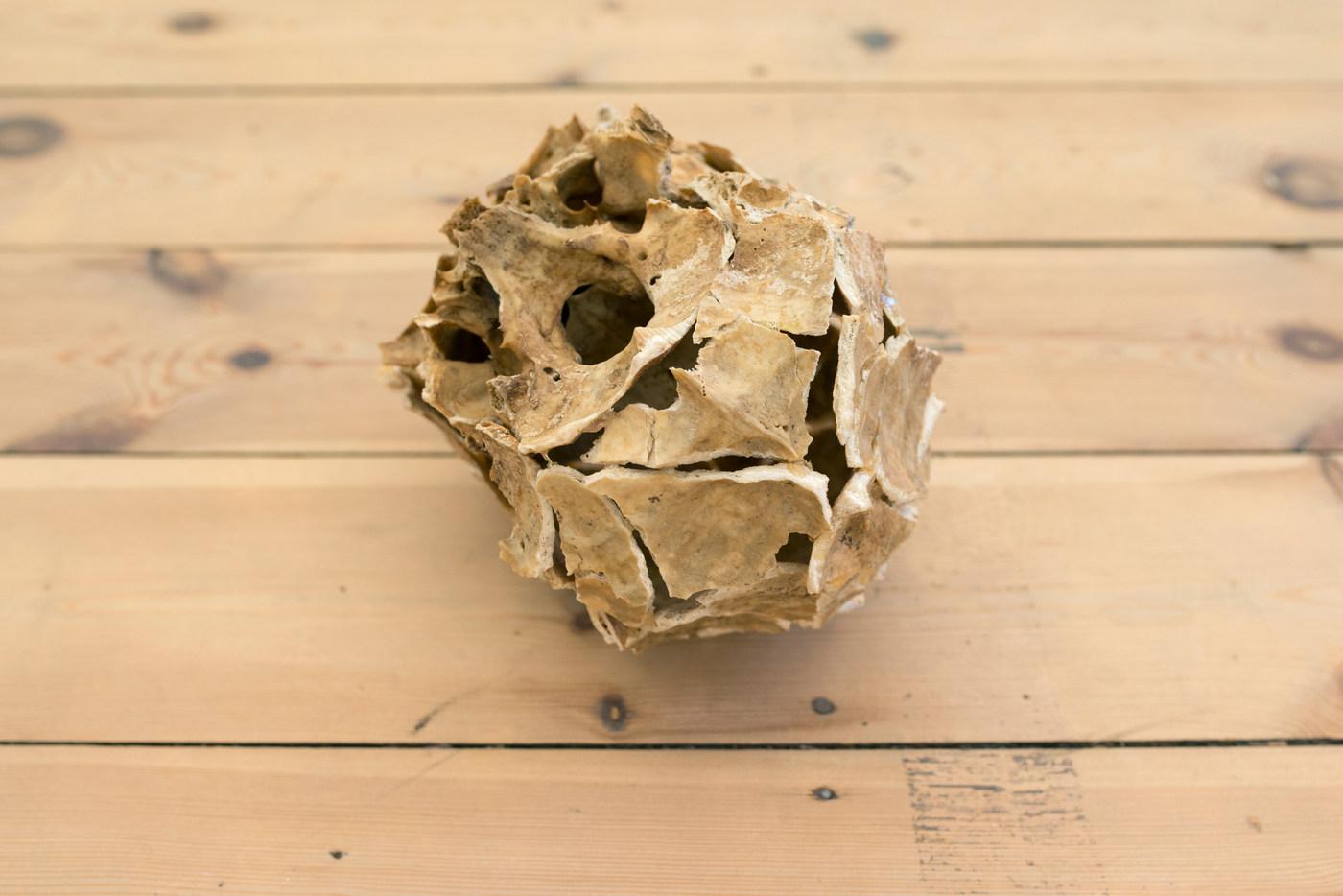 Ariel Schlesinger, Untitled (Inside Out Skull), 2014 (4)